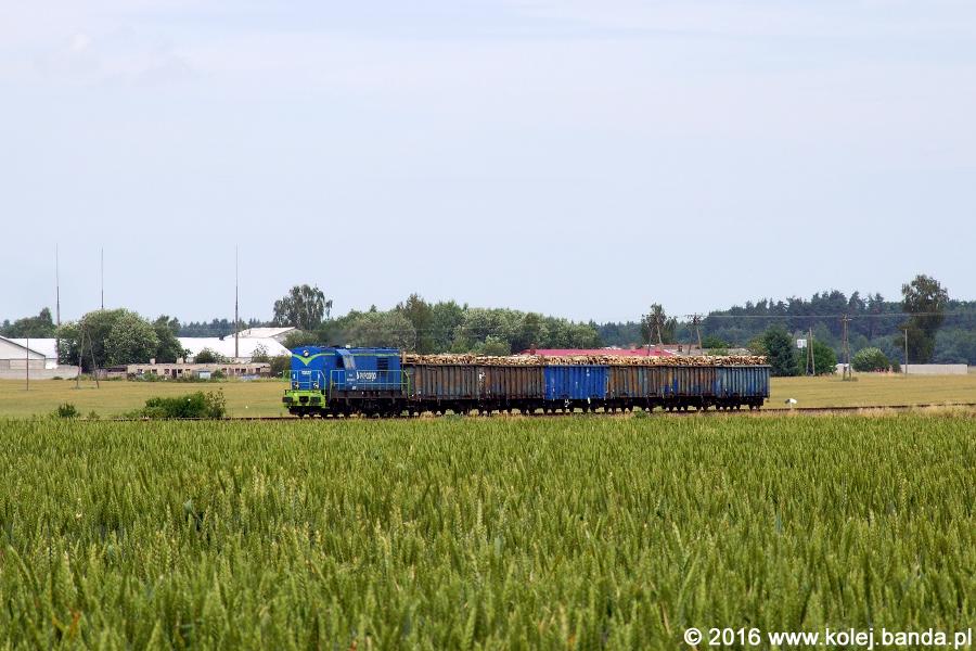 SM31-145